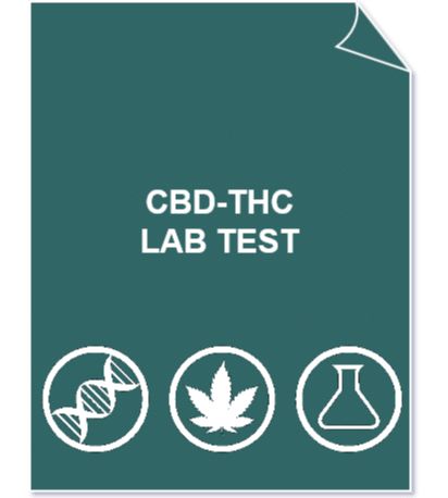 CBD THC - main Cannabinoids profile lab test (CBD/A, THC/A) + CBD/THC ratio